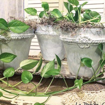 Les moules IOD agrémentent d'anciens pots pour le jardin